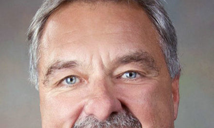 LLS audit reveals no wrongdoing