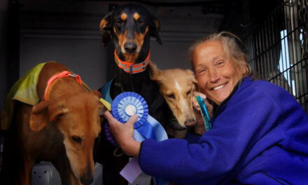 Frances Zeller, museum coordinator at the Belen Harvey House Museum, loves her dogs and enjoys to sew