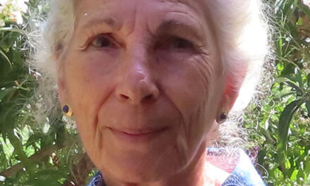 Valencia Soil & Water Conservation District Board of Supervisors censures one of its own — Gail Goodman