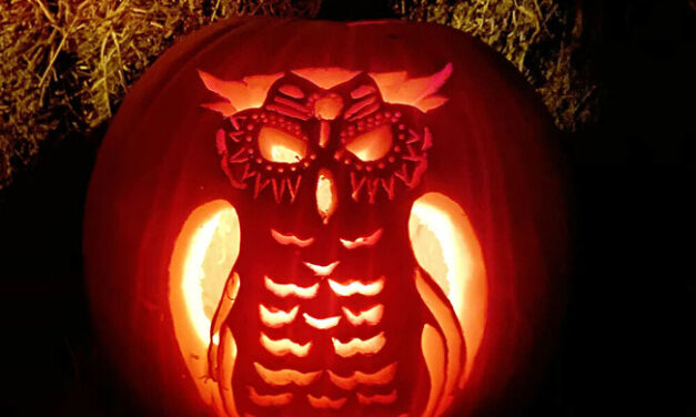VCNB Pumpkin Carving and Decorating Contest