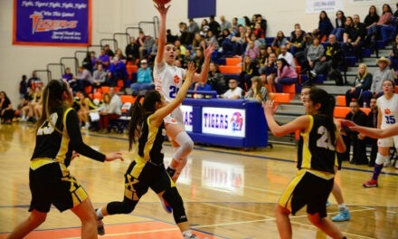 Prep Basketball: Los Lunas rolls to district tournament title