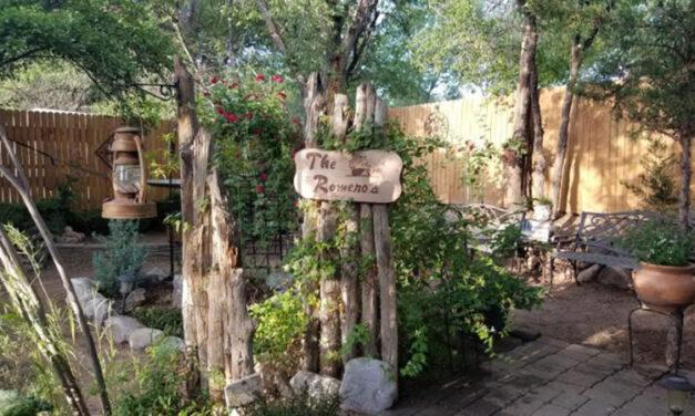 Los Lunas 'Yard of the Week' is a hidden oasis