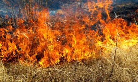 Homeowners encouraged to take action now to protect their homes