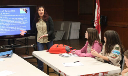 Local troops, including girls, teach leadership skills and more