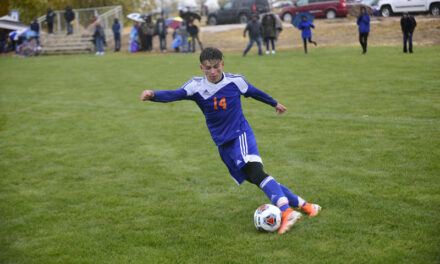 State soccer: Los Lunas boys advance to semi-finals, girls eliminated