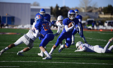 Los Lunas falls to Roswell in state championship game