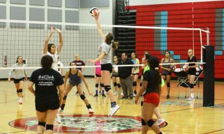 Local high school volleyball previews