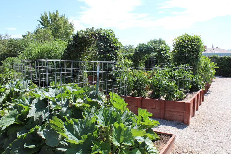 Valencia County Yard and Garden Contest