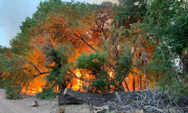 Arrest made in Los Lunas bosque fire on Tuesday