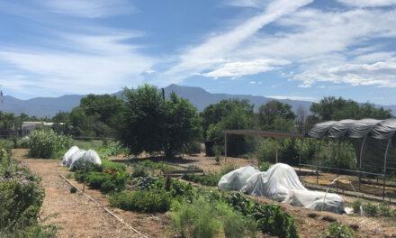 Community garden gets funding