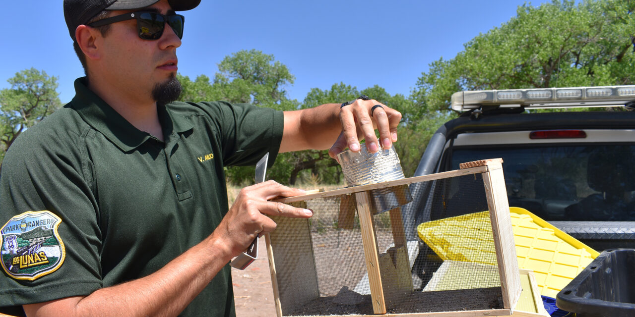 Los Lunas Open Space investing in the future with pollinators