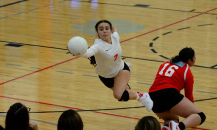 Valencia High School volleyball beats Alamogordo