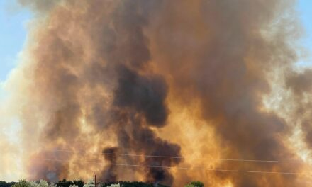 Large bosque fire burning north of Veguita
