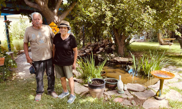 June Yard of the Month 'was like a park in your own backyard'