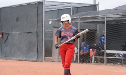 Lady Tigers and Jaguars fall at state tourney
