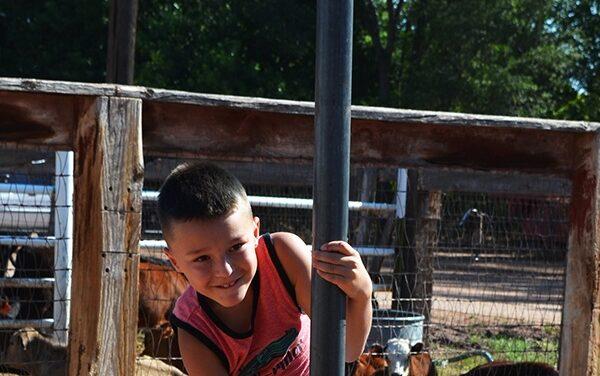 82nd Bosque Farms Community Fair