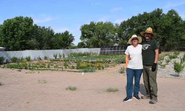 Cowboy Country: Rocket Punch Farm; regenerative & ecological-based agriculture