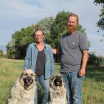 Cowboy Country: Sublime Pastures; life-changing regenerative farming