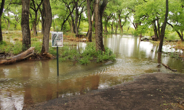 Water levels in Rio Grande high; officials say not to panic