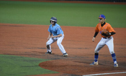 Tigers' run ends in semifinals