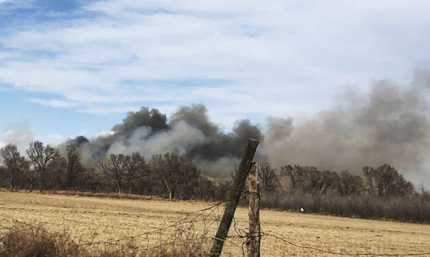 Hot ashes deemed the cause of 'accidental' Iron Works Fire
