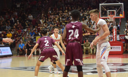 Tigers fall to Valley in state championship game, finishes as runner-up in tournament