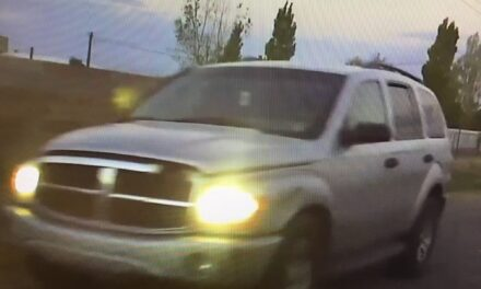LLMS student struck in bus stop hit and run