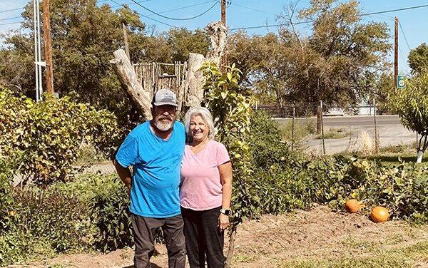 Aragon yard in Los Lunas features vegetables, fruit trees, wild flowers